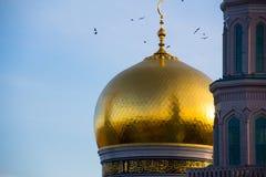 Стадо вокруг Golden Dome и полумесяца центрального собора Стоковые Фотографии RF