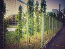 Стальная сетчатая загородка перед полем баскетбола во времени вечера Стоковая Фотография