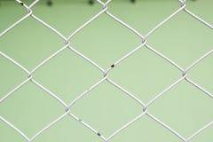 Стальной конец-вверх загородки с зеленой предпосылкой Стоковое Изображение RF