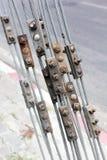 Стальные кабель и соединение Стоковые Фото