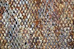 Сталь ячеистой сети Rrust Стоковое Фото
