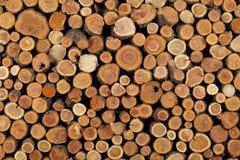 Ствол дерева сложенный красиво Стоковое фото RF