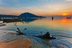 Ствол дерева на пляже Стоковая Фотография RF