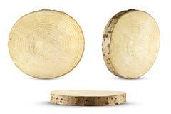 Ствол дерева отрезка пилы Стоковые Фотографии RF