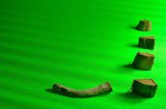 Стволы дерева в луге Стоковая Фотография