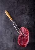 Стейк стейк говядины сырцовый Свежий сырцовый стейк говядины филея отрезал траву o - украшение Розмари Стоковые Фото
