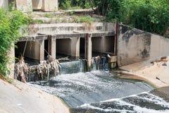 стеките воду Стоковые Изображения RF