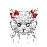 Стекла милого котенка нося и смычок также вектор иллюстрации притяжки corel Чертеж бесплатная иллюстрация