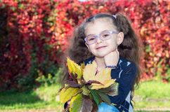 Стекла милой девушки нося на предпосылке i природы Стоковое Изображение RF