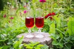 2 стекла с домодельным вином на пне дерева в лете паркуют Стоковые Фото