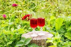 2 стекла с домодельным вином на пне дерева в лете паркуют Стоковая Фотография