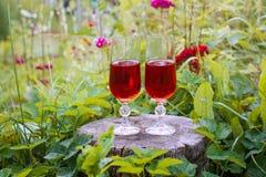 2 стекла с домодельным вином на пне дерева в лете паркуют Стоковое фото RF