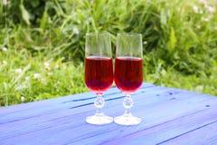 2 стекла с домодельным вином на пне дерева в лете паркуют Стоковые Изображения RF