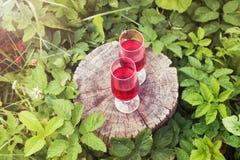 2 стекла с домодельным вином на пне дерева в лете паркуют Стоковые Фотографии RF