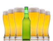 стекла фронта бутылки пива полные Стоковая Фотография RF