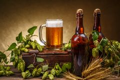 стекло бутылок пива Стоковое фото RF