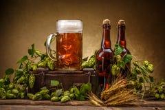 стекло бутылок пива Стоковое Изображение RF