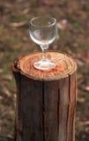 Стекло вина на журнале Стоковые Фото
