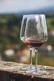 Стекло вина Стоковые Фотографии RF