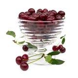 стекло вишни шара Стоковые Изображения