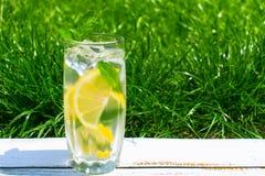 Стекло воды с лимоном и мятой на предпосылке свежей травы зеленого цвета лета Охлаждая напиток стоковое изображение