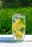 Стекло воды с лимоном и мятой на предпосылке свежей травы зеленого цвета лета Охлаждая напиток стоковые фотографии rf