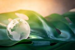 Стекло глобуса мира cystal на зеленых лист стоковые изображения rf