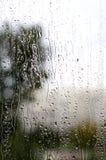 стекло дня осени ненастное Стоковое Изображение RF