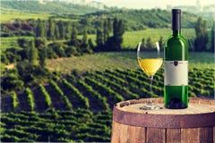 Стекло и бутылка белого вина на предпосылке Стоковые Фотографии RF