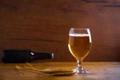 Стекло и бутылка пива, ушей ячменя на деревянной предпосылке aleppo стоковые фотографии rf