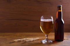 Стекло и бутылка пива, ушей ячменя на деревянном столе aleppo стоковое фото rf