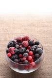 стекло мешковины шара ягод замерли холстиной, котор Стоковое Изображение