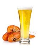 Стекло пива и ые crayfishes Стоковое Фото