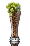 Стекло пива с ингридиентами стоковые фотографии rf