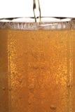 стекло пива Стоковые Фото