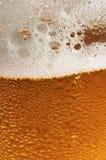 стекло пива Стоковая Фотография
