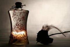 стекло пожара Стоковые Изображения