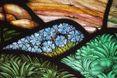 стекло сада цветка запятнало Стоковая Фотография RF