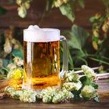 Стекло свежего пива на деревянном столе стоковые изображения