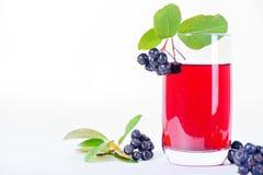 Стекло сока aronia с ягодами Стоковые Фотографии RF