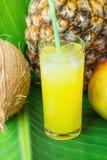Стекло состава высокорослое с свеже сжиманным тропическим фруктовым соком с манго кокоса ананаса соломы на больших зеленых лист л Стоковая Фотография RF