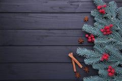 стекло состава рождества bauble голубое Ветви ели и ягоды калины на черной предпосылке стоковое изображение