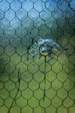 Стекло со сломленным стоковое изображение