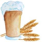 Стекло с темным пивом и ушами пшеницы на белой предпосылке иллюстрация акварели для плакатов иллюстрация штока