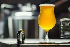 Стекло тюльпана светлого пива в винзаводе Стоковые Изображения RF