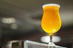 Стекло тюльпана светлого пива в винзаводе Стоковое фото RF