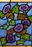 стекло церков цветастое Стоковая Фотография