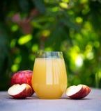 Стекло яблочного сока в саде стоковая фотография rf