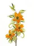 стекло 4 цветков Стоковые Изображения