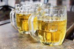 стекло bocks пив холодное Стоковое Фото